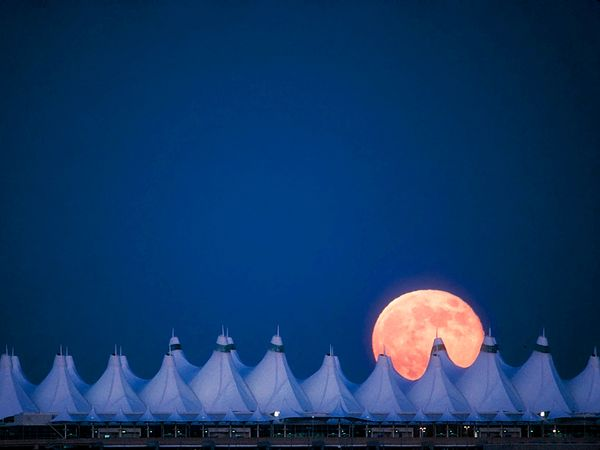 full-moon-denver-richardson_63201_600x450
